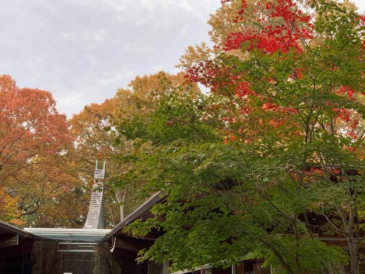 TUCW_fall_2019_00028
