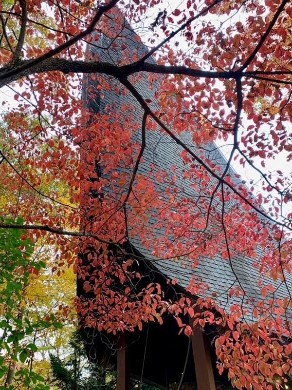 TUCW_fall_2019_00031